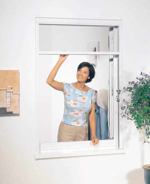 insektenschutz roos fenster und haust ren gmbh. Black Bedroom Furniture Sets. Home Design Ideas